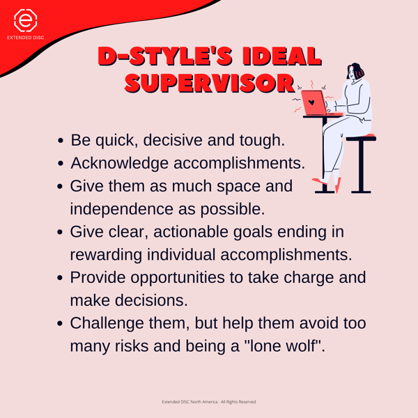 D-STYLE IDEAL SUPERVISOR