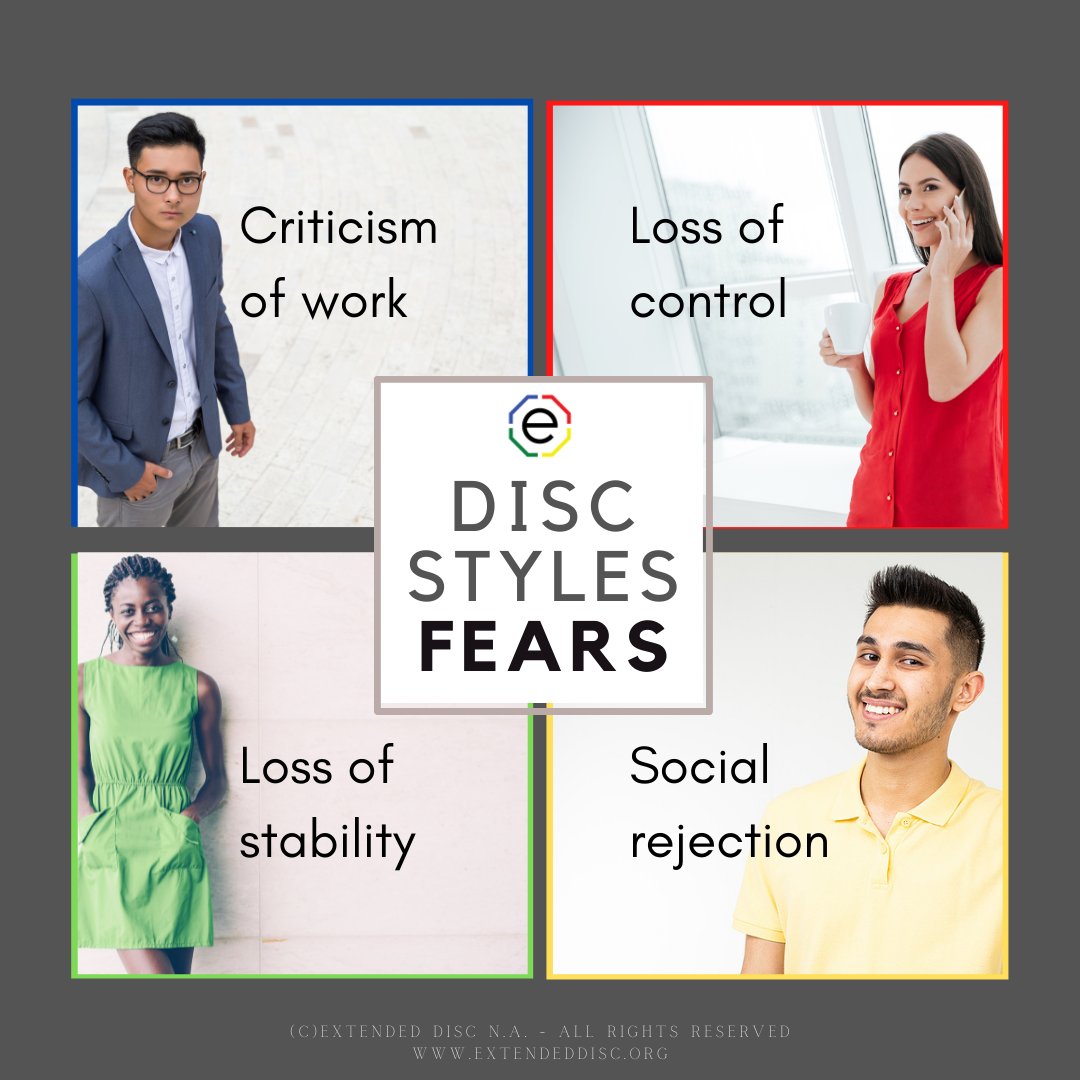 DISC STYLE FEARS