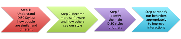 DISC 4 Step Process