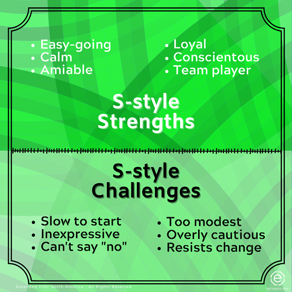 S-style behavioral strengths and challenges