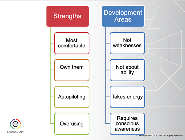 DISC Strengths and Development Area Overview Infographic slide