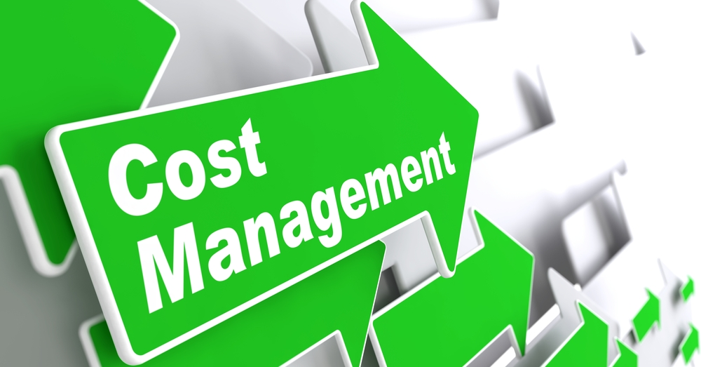 """Cost Management - Business Concept. Green Arrow with """"Cost Management"""" Slogan on a Grey Background. 3D Render."""
