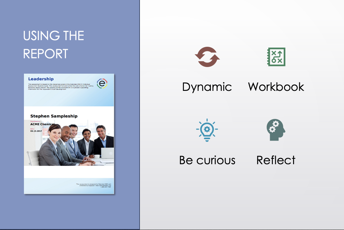 Using the DISC Leadership Report Infographic