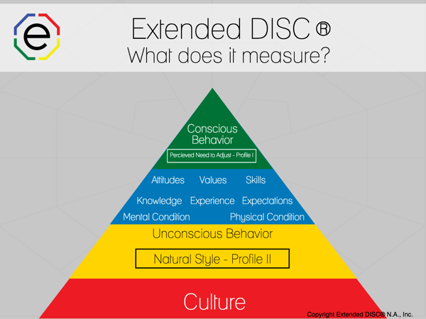 what does Extended DISC Measure Pyramid